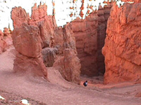 Trails into Bryce Canyon